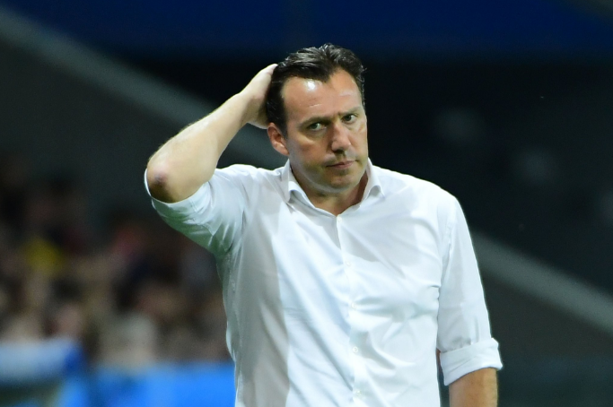 Optimized-Wilmots.png